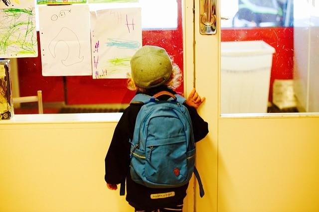 Formation: Préparer l'entrée à l'école maternelle